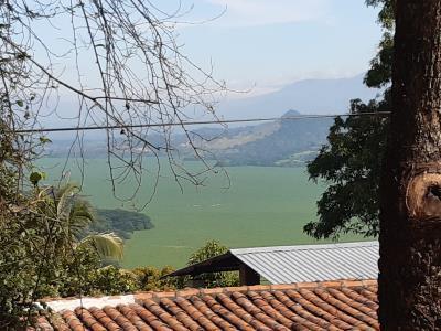 Uitzicht over het meer bij Suchitoto, op dit moment overwoekerd door waterlelie's (onkruid hier)