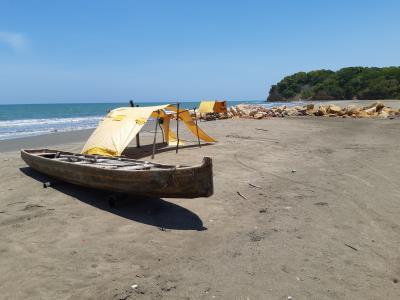 Laatste (echte) dag in Colombia. Relaxed door de mangroves en lekker niets doen op het strand en in de zee.
