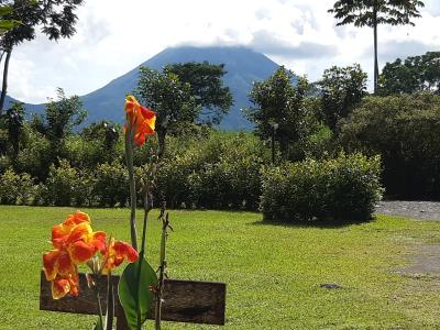 De 'El Arenal'-vulkaan gezien vanuit de tuinen van de lodges.