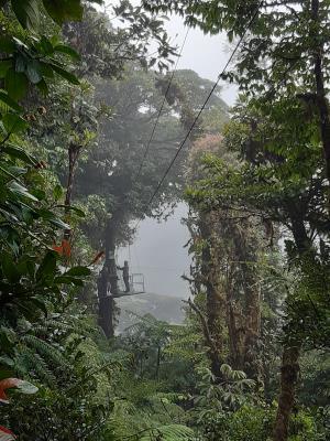 Ziplinen door de wouden van Selvtura.