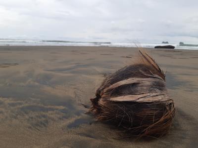 Op het strand bij Vergel de Punta Mala.