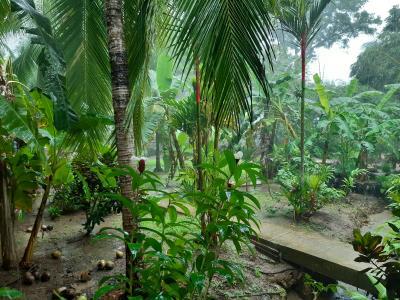 """Toch weer een """"beetje"""" regen... little change of plans..."""